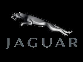 - Jaguar