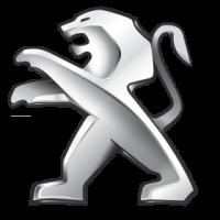 Bezinwazyjne przyciemnianie szyb Peugeot 207